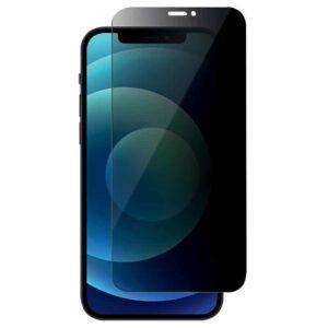 Premium Privacy Panzerglas iPhone 12 mini